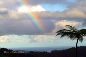 Fiji Rainbow horizontal 450x for Blog Critics