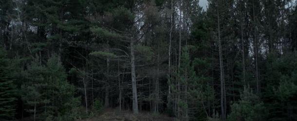 The Witch 2015: Trailer zum gefeierten Horrorfilm