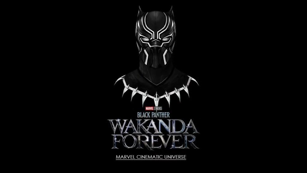 black-panther-wakanda-forever-marvel-cinematic-universe