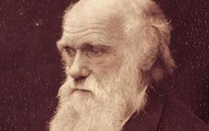 Η γοητεία της Εξελικτικής Θεωρίας
