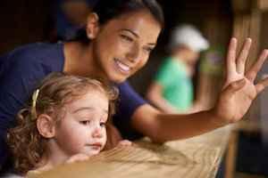 Εκπαιδευτικό πρόγραμμα:Εκπαίδευση Συνοδών Παράλληλης Στήριξης και Θεραπευτών Κατ' οίκον Παρέμβασης