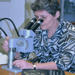 Διάλεξη: Μινωικές σφραγίδες: μια τέχνη σε μικρογραφία