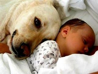 Τα ζώα κάνουν καλό στα παιδιά