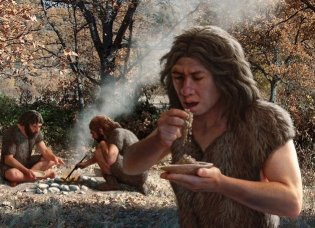 Reconstruction of El Sidron Neanderthals dining on some plants