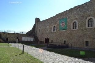 filu ro - cetatea neamtului 2016-13