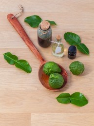 essential oil sanctuary (1)
