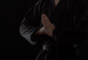 Cobra Strike Karate Background