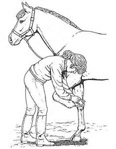 horse picking