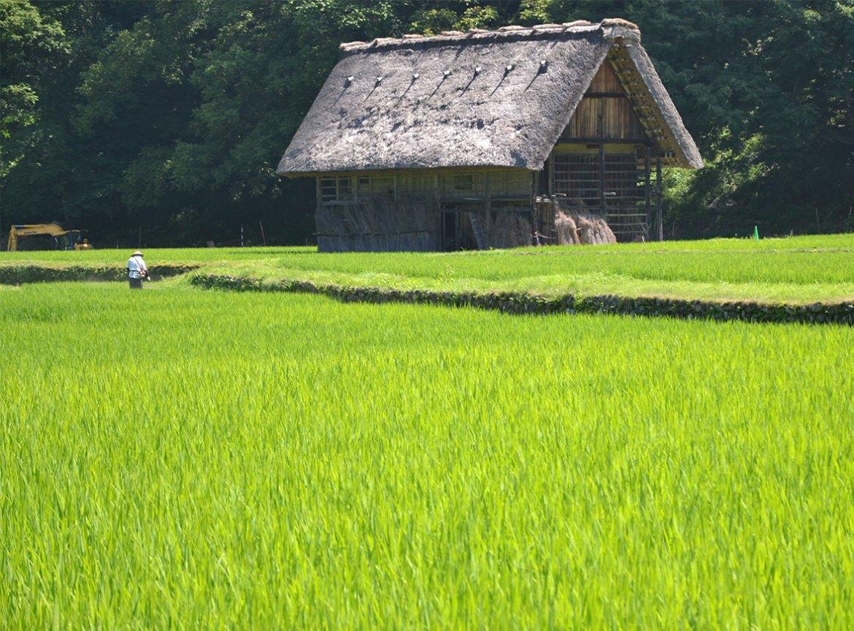 villaggio di Shirakawa-go