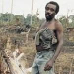 Paysans africains et Socapalm: importantes précisions du groupe Bolloré