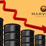 Harvest Natural veut faire couler le pétrole à Dussafu