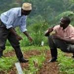 Conférence sur l'agriculture: La BAD face aux besoins des agriculteurs