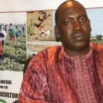 Sénégal : L'ANIDA  a injecté 17 milliards de F CFA dans le domaine agricole