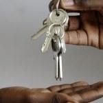 Le Cameroun lance la déclaration électronique des transactions immobilières