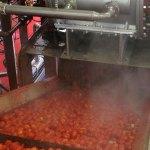 Côte d'Ivoire : Agronomix annonce trois usines de transformation de tomates et de fruits