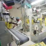 Nigéria: Flour Mills lance la construction d'une minoterie de sorgho à  Kano