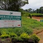 Cameroun- Les populations déposent une pétition contre l'Américain Herakles Farms