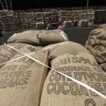 La Côte d'Ivoire peine à exporter son cacao