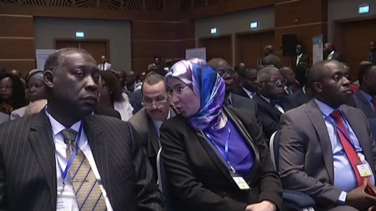 Polémique autour des délégations africaines à la COP23 (décryptage)
