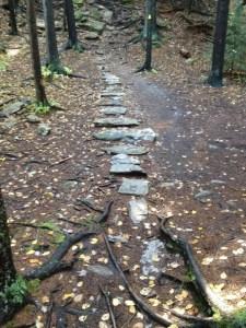 Benefits of hiking steps