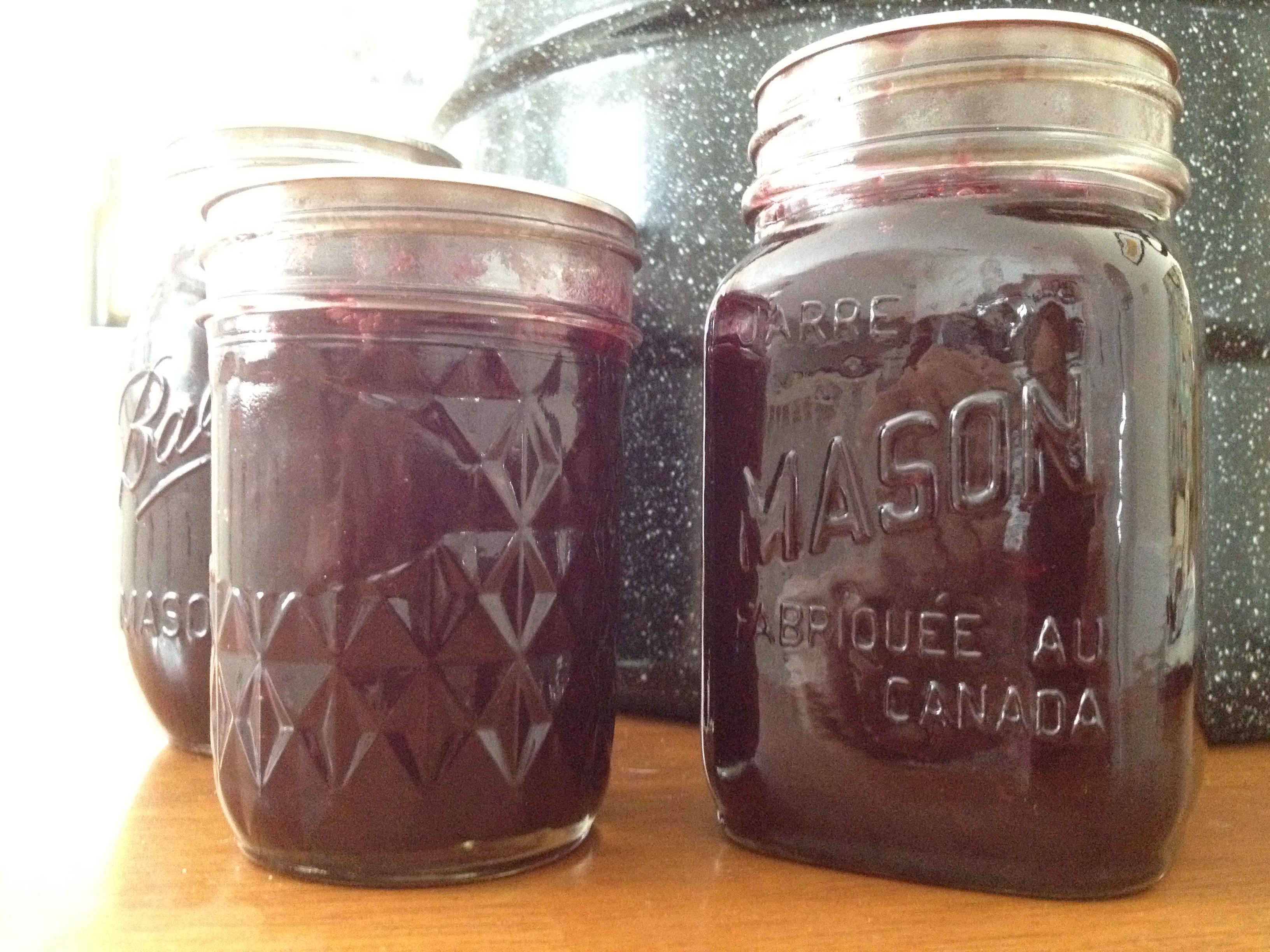 wild concord grape jam