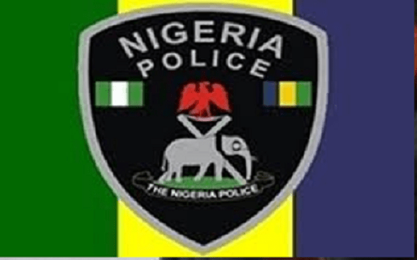 Image result for nigeria police force