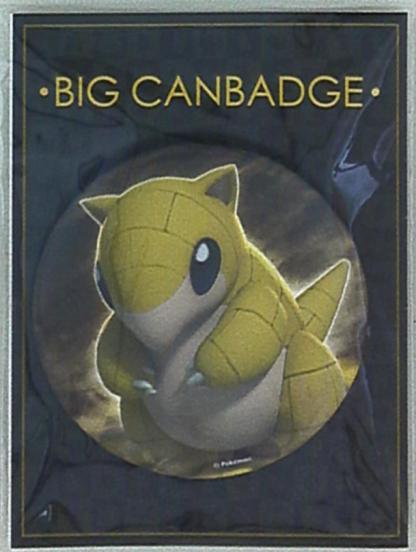 Pokemon - Sandshrew Pinssi