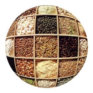 https://i1.wp.com/www.finanzalive.com/wp-content/uploads/2008/05/cereali_ns.jpg