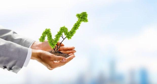 rentabilidad de los negocios