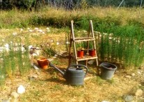 Notre potager est biodynamique et il est en train de se convertir à la permaculture.