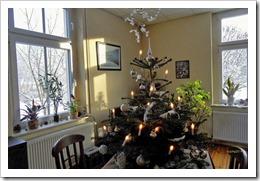 Weihnachtsbaum 26.12.2014