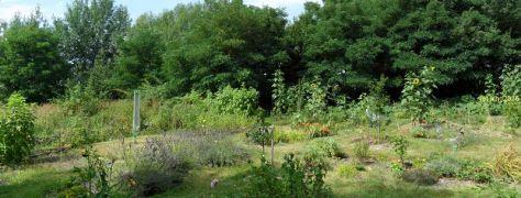 Gartenblicke 3