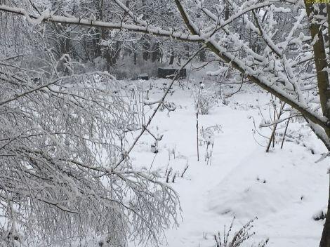 Schnee am 07.03.2018