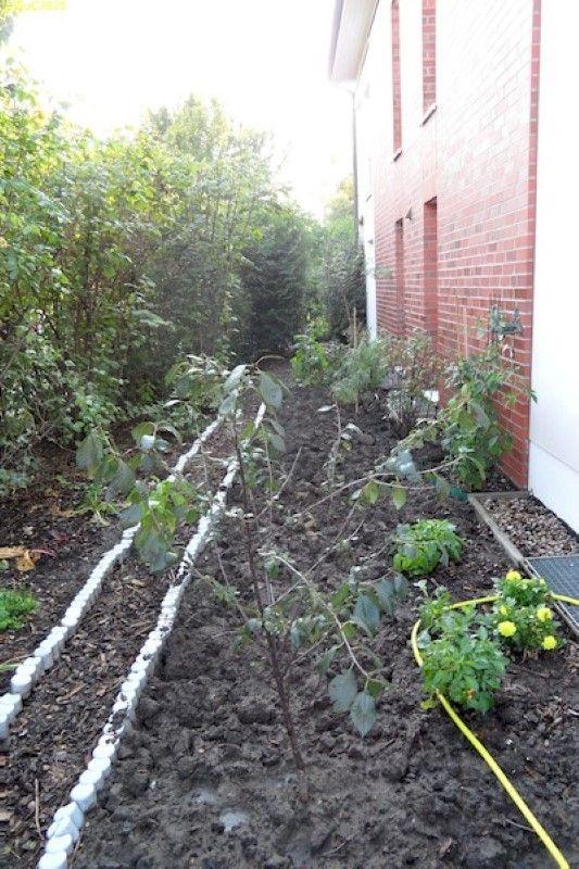 Unser Garten in Finkenkrug September 2011 Bild 2