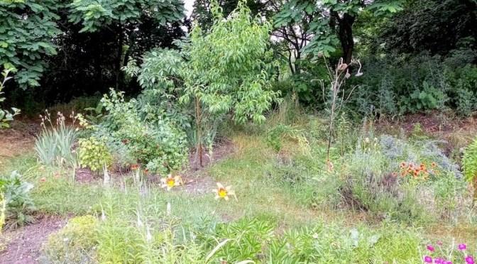Juni endet regnerisch