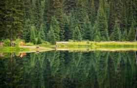 POW: Relection at Island Lake