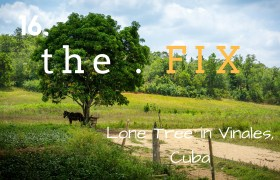The Fix 16: Lone Tree in Vinales