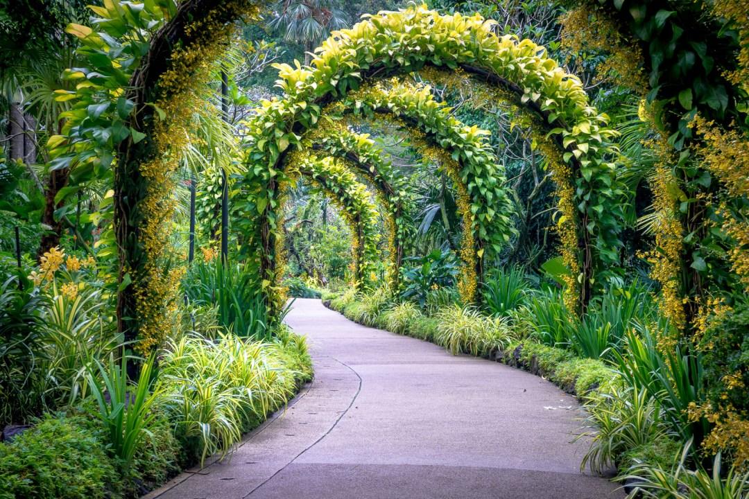 POW: Golden Arches in Singapore's Botanical Gardens