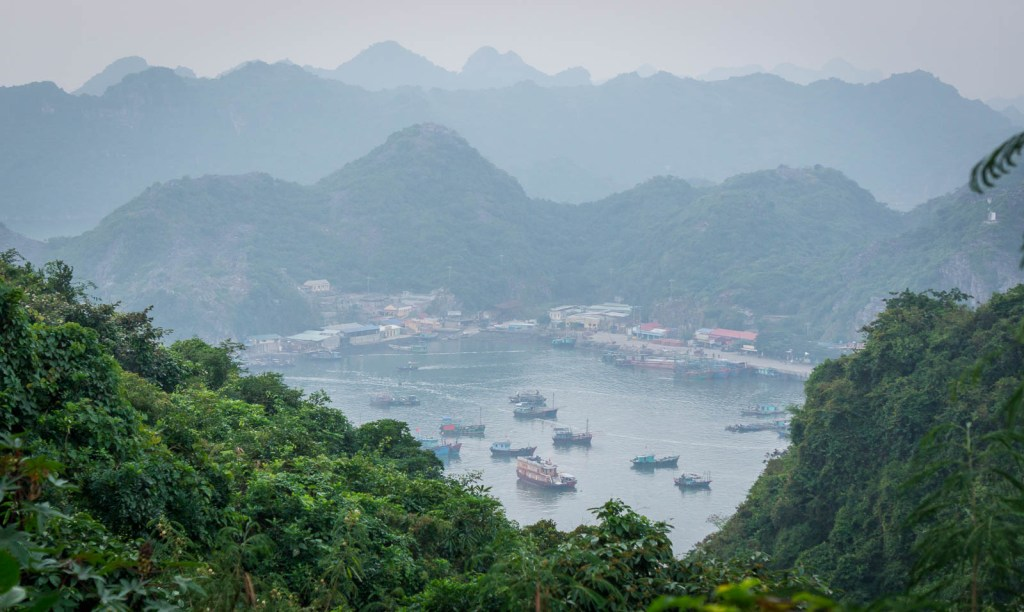 Cat ba town from above