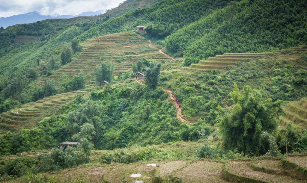 Hikers trekking in Sapa