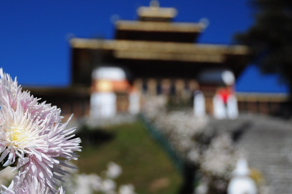 DRUK WANGYAL LHAKHANG Flower View
