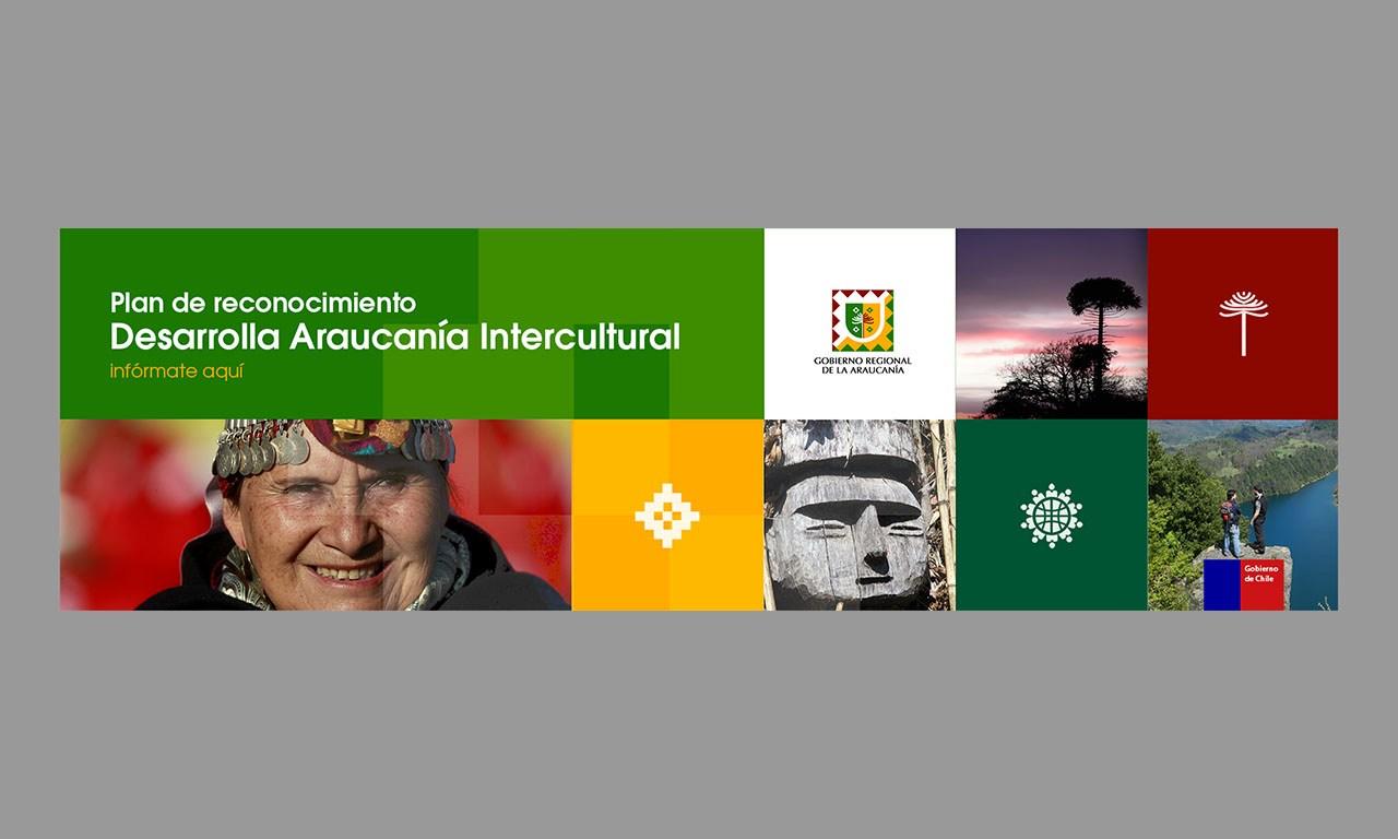 Gobierno de La Araucanía