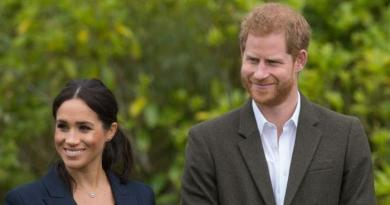 Prince Harry will do his best to 'avoid' politics unlike wife Meghan Markle