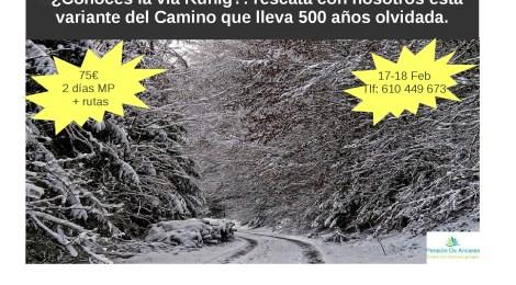 Camino de Santiago (vía Künig)