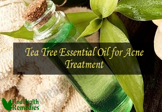 tea-tree-essential-oil-for-acne-treatment