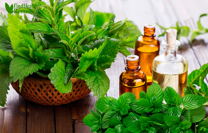peppermint-essential-oil-to-treat-dehydration