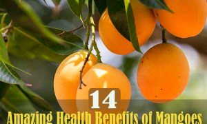 14-amazing-health-benefits-of-mangoes