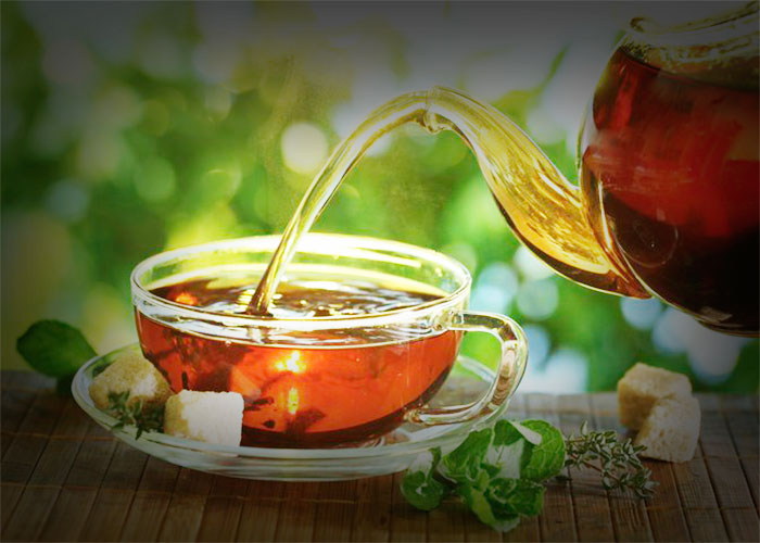 Green Tea to Treat TB (Tuberculosis)