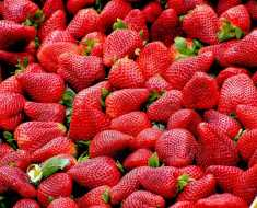Strawberries for weight loss