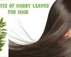 Benifits of Curry Leaves